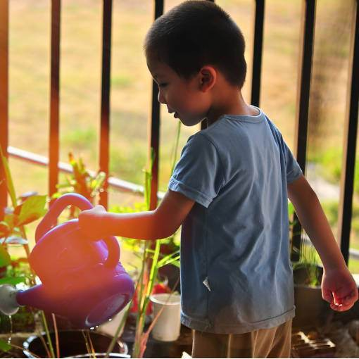 about-boy-planting