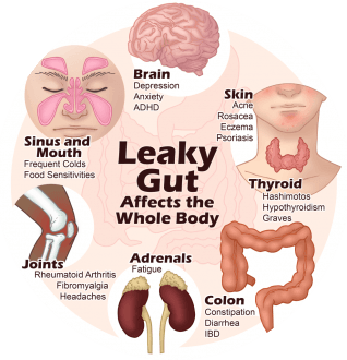 Leaky Gut Effects