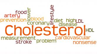 Cholesterol4
